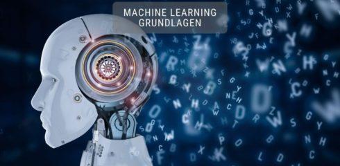 Machine Learning Grundlagen  – Random Forest einfach erklärt